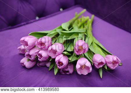Beautiful Bouquet Of Multicolored Tulips Close-up. Pink, Orange, Lilac Blossoming Spring Flowers. Ba