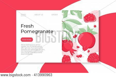 Pomegranate Fruits On Branch With Leaves Vector Hand Drawn Landing Page Template. Fresh Pomegranate.