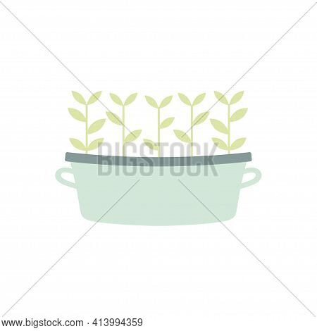 Crop Production, Growing Vegetables, Seedling Of Horticulture, Growth Of Plants, Vector Illustration