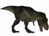 3D Render of an Tyrannosaurus - 3D Dinosaur poster