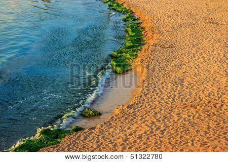 Beach Sand  In The Morning Sun