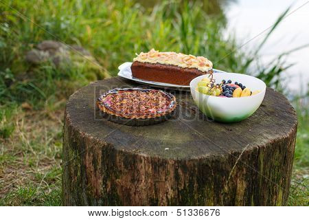 Food For Picknick In Nature: Quiche With Tomato, Cake And Fruits