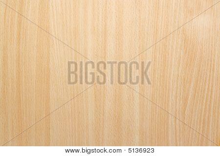 Natural Beech Wood Background Texture
