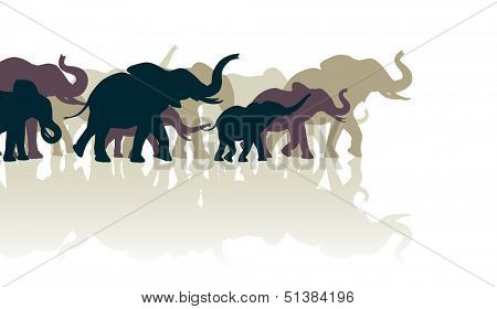 Editable vector illustration of an elephant herd with reflections