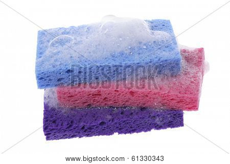 Sponges with soap suds