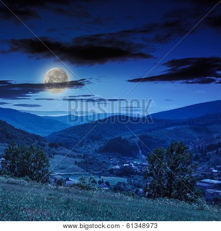 Village In Mountain Foot Valley With Forest At Night