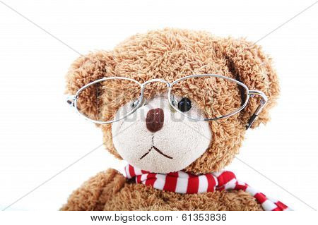 Clever teddy bear on a white background with glasses