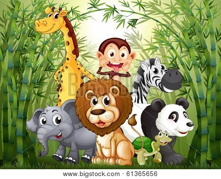 Illustration of a bamboo forest with many animals
