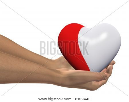 HIGH RESOLUTION red and white 3D heart held in hands by