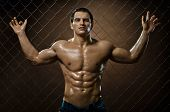 the very muscular handsome sexy guy on netting steel fence poster