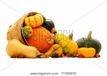 Group of autumn squash and pumpkins spilling from a harvest pail poster