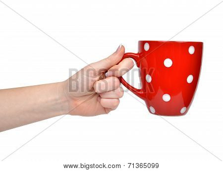 Red tea cup in woman hand
