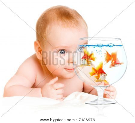 Baby And  Goldfishs