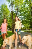 Close portrait of two happy teenage girls walking their golden retriever dogs in the park and chatting poster