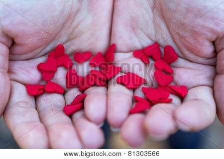 Female Hands Holding Sugar Hearts