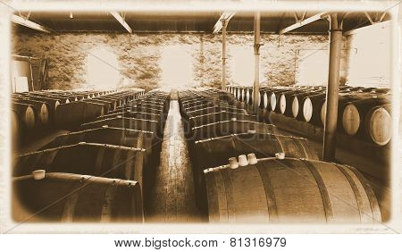 Last Century Historical Wine Cellar