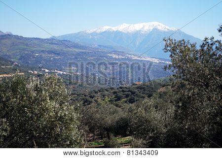 Spanish countryside.