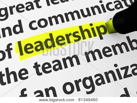 Leadership concept with a 3d rendering of business related words and leadership text highlighted with a yellow marker. poster