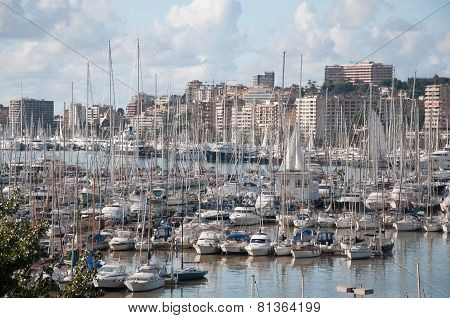 Palma skyline to Paseo Maritimo with small boat marina