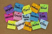 Thank you in sixteen languages - colorful sticky notes with handwriting on cork bulletin board poster