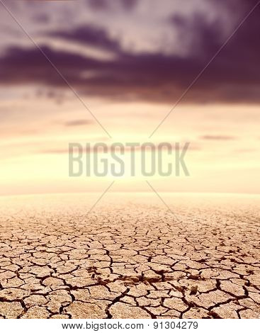 Desert landscape