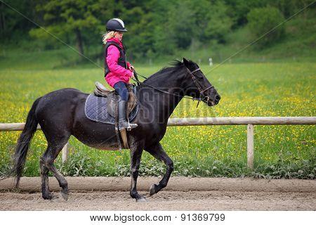 Black Pony And Girl