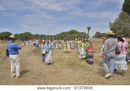 Pilgrims Wlaking To El Rocio