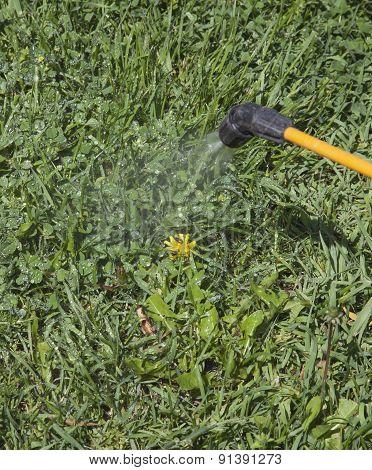 Device Of Spraying Pesticide.