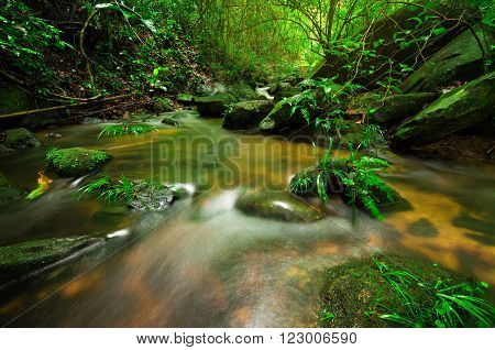 Small waterfall in Chiang mai, Thailand. Babbling Brook in Green Forest