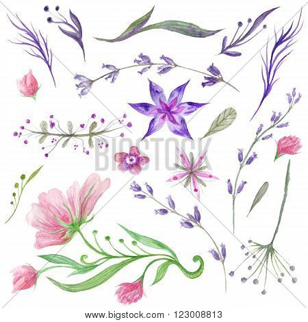 Beautiful collection of tender hand-painted eco floral elements  and plants for wedding, invitation, card design