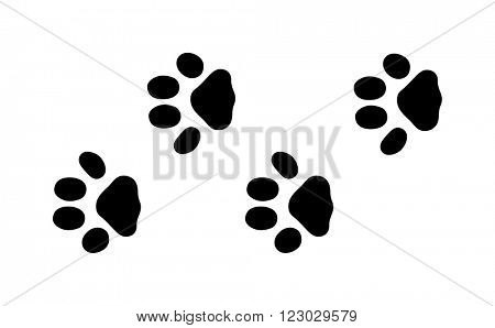Animal black foots and wildlife animal mammal steps, pet traces. Animal foots silhouette steps Animal foot prints and tracks isolated steps traces on white for wildlife concept design vector.