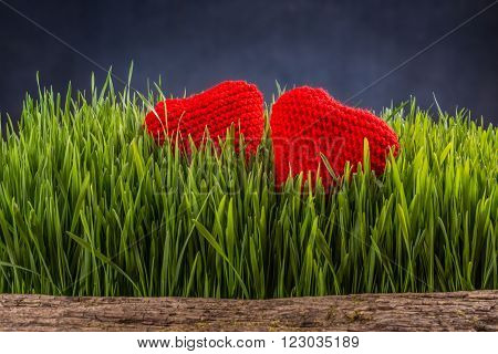 Two knitted hearts in green grass, love concept