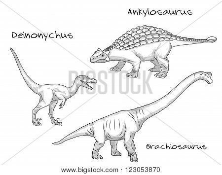 A set of thin line engraving style illustrations of various kinds of prehistoric dinosaurs, it includes deinonychus, ankylosaurus, brachiosaurus.