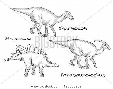 A set of thin line engraving style illustrations of various kinds of prehistoric dinosaurs, it includes stegosaurus, parasaurolophus, iguanodon.