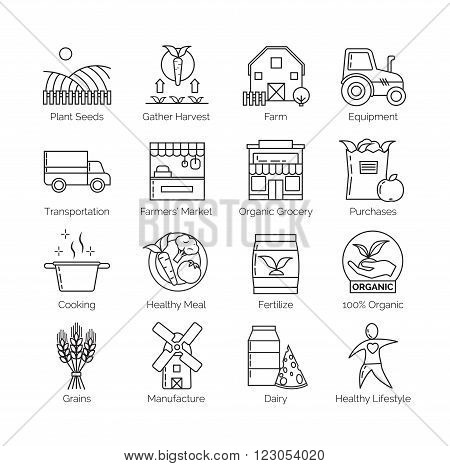 From farm to fork set of flat thin line vector icon illustrations. Shows how organic food makes its way from farm to your plate