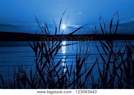 Mystical night (moonlight on the river) as a beautiful landscape