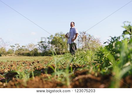 Farming and cultivations in Latin America. Middle aged hispanic farmer standing proud in tomato field contemplating the ground and plants recently seeded. Copy space in the sky.