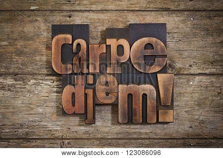carpe diem, phrase set with vintage letterpress printing blocks on rustic wooden background