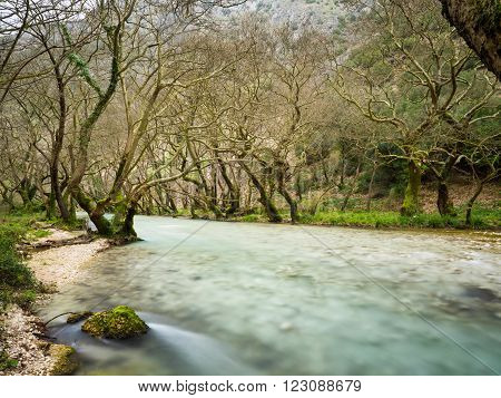 small lake louros with trees and fresh water in north Greece close to Ioannina