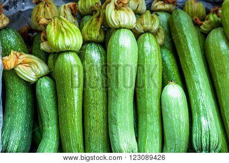 White Zucchinies