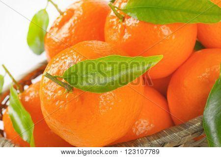 close up of ripe tangerines in scuttle