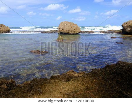 Coral reef and volcanic rocks.