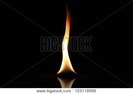 Single burning flame isolated on a black background.
