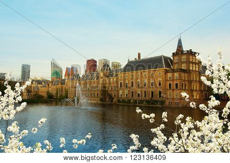 view of Binnenhof Dutch Parliament over pond at spring, The Hague, Netherlands