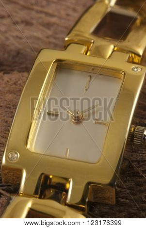 Gold  ladies watch with gemstones resting on blocks of wood