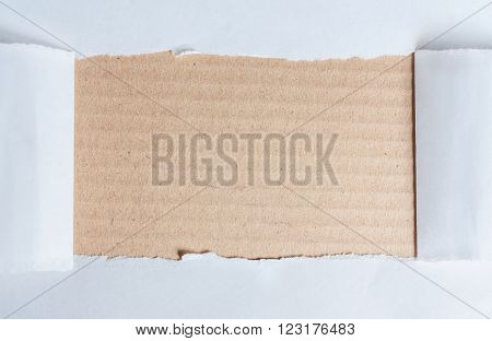 White frame with beige background. Copy space for your text