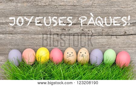 Colorful easter eggs in green grass. Funny holidays decoration. Joyeuses Pâques - Happy Easter french