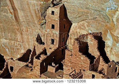Mesa Verde Cliff Dwellings Glowing in the afternoon sun in Colorado USA