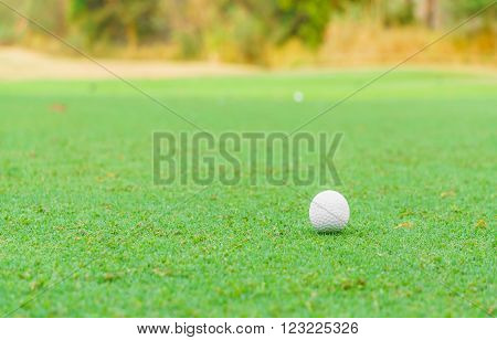 A golf ball on the green grass