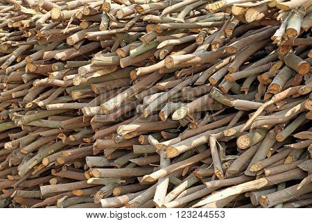 photo of tree limbs and branches stacked background or texture